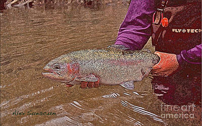 Brown Trout Drawing - Tailwater Bow by Alex Suescun