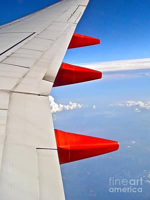 Photograph - Take Flight by LeLa Becker