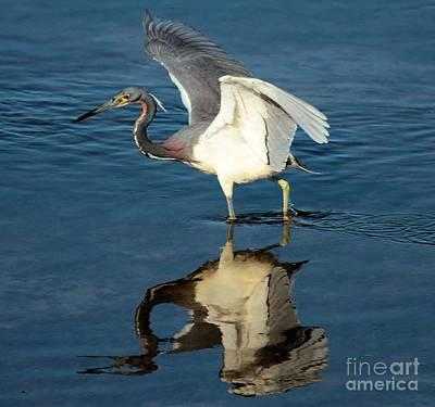 Photograph - Takeoff by Adam Jewell