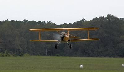 Taking Flight Art Print by