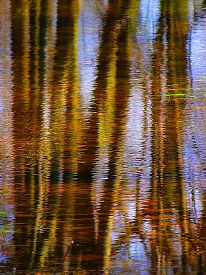 Photograph - Tall Reflections by Beth Akerman