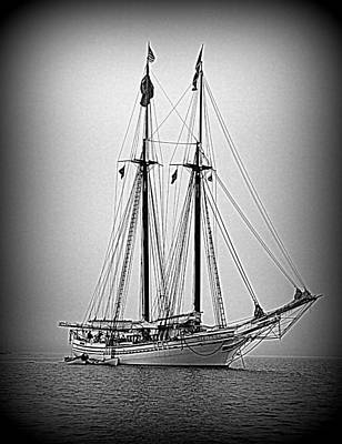 Photograph - Tall Ship Heritage by Doug Mills