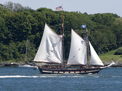 Photograph - Tall Ship Sailing Past Newport Ri by Barry Doherty