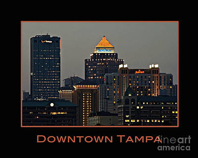 Photograph - Tampa Poster by Nancy Greenland
