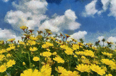Photograph - Tansy Flowers by Michael Goyberg