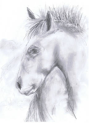 Drawing - Taos Horse by Marilyn Barton