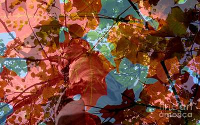 Photograph - Tapestry Of Autumn 2 by France Laliberte