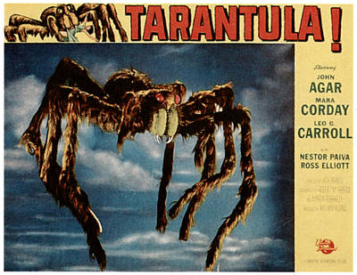 1955 Movies Photograph - Tarantula, 1955 by Everett