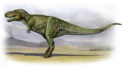 Tarbosaurus Digital Art - Tarbosaurus Bataar, A Prehistoric Era by Sergey Krasovskiy