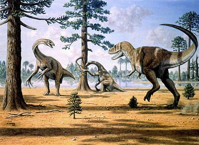 Tarbosaurus Photograph - Tarbosaurus by Mauricio Anton