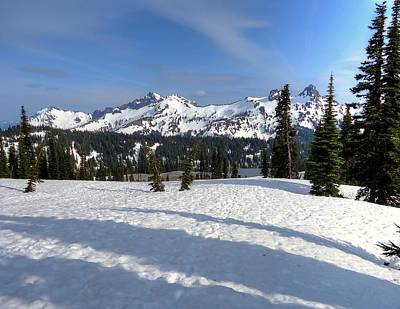Photograph - Tatoosh Range From Paradise by Peter Mooyman