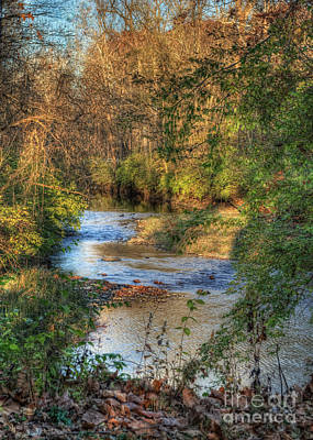 Tawawa Creek Art Print by Pamela Baker