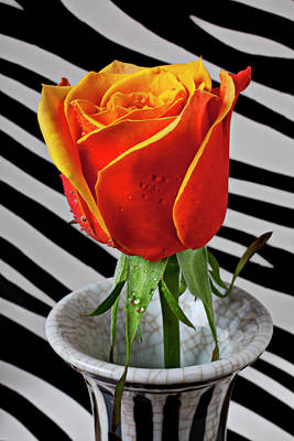 Tea Rose In Striped Vase Art Print by Garry Gay