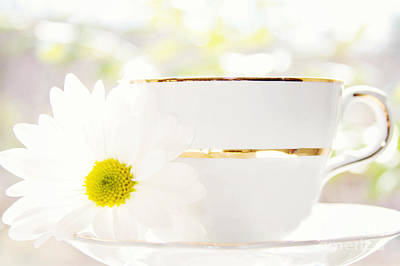 Teacup Filled With Sunshine Art Print by Kim Fearheiley