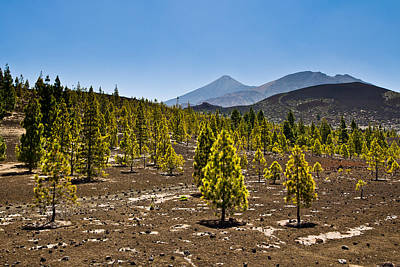 Photograph - Technicolor Teide by Justin Albrecht