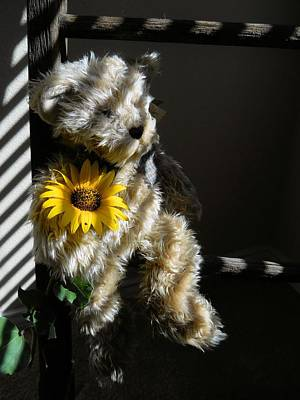 Photograph - Teddy Bear by Lynnette Johns