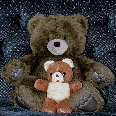 Cubs Photograph - Teddy Elder Care Bear by LeeAnn McLaneGoetz McLaneGoetzStudioLLCcom