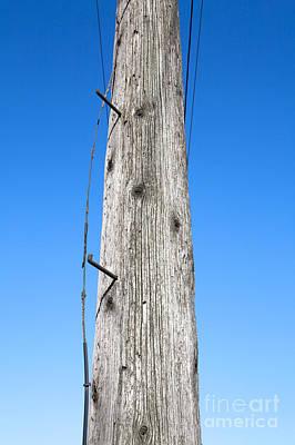Telephone Poles Photograph - Telephone Pole by Paul Edmondson