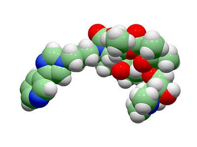 Telithromycin Antibiotic Molecule Art Print by Dr Tim Evans