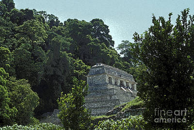 Photograph - Temple In The Jungle Palenque Mexico by John  Mitchell