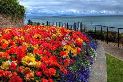 Photograph - Tenby In Bloom by Steve Purnell