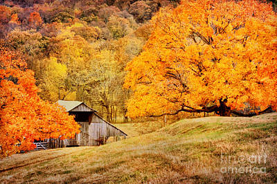 Photograph - Tennessee Autumn Barn by Cheryl Davis