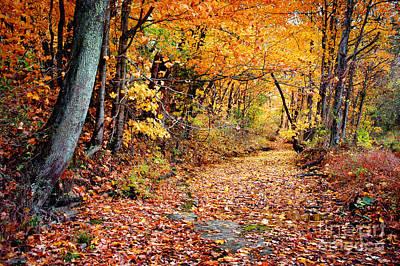 Photograph - Tennessee Autumn by Cheryl Davis