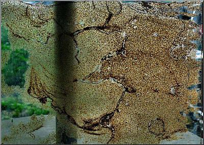 Photograph - Termitecomp14 2008 by Glenn  Bautista