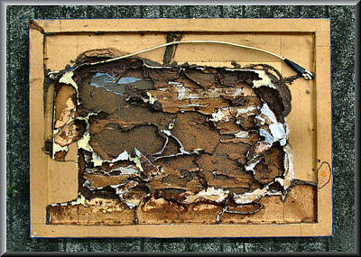 Photograph - Termitecomp4 2008 by Glenn Bautista