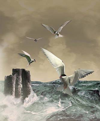 Painting - Terns In The Wind by IM Spadecaller