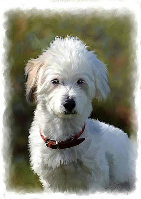Painting - Terrier Dog Portrait by Michael Greenaway