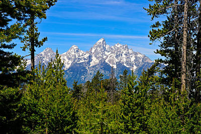 Photograph - Teton Window by Greg Norrell