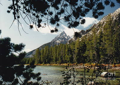 Photograph - Tetons Lakeside by Barbara Plattenburg