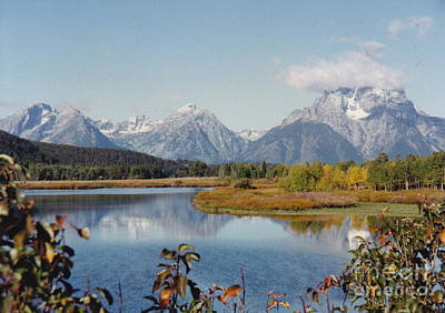 Photograph - Tetons Reflection by Barbara Plattenburg