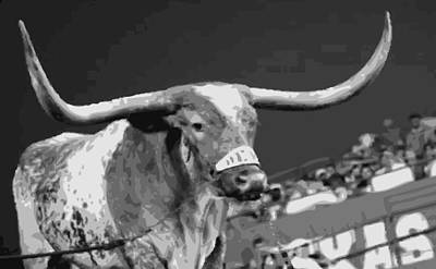 Heart Of Texas Digital Art - Texas Bevo Bw15 by Scott Kelley