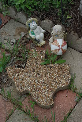 Photograph - Texas Critter Summer by Robyn Stacey
