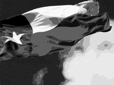 Heart Of Texas Digital Art - Texas Flag In The Wind Bw15 by Scott Kelley