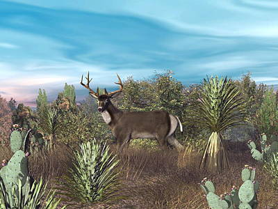 Digital Art - Texas Mule Deer by Walter Colvin
