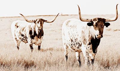 Texas Pair Art Print by Elizabeth Hart