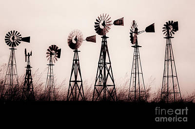 Texas Windmills Art Print by Tamyra Ayles