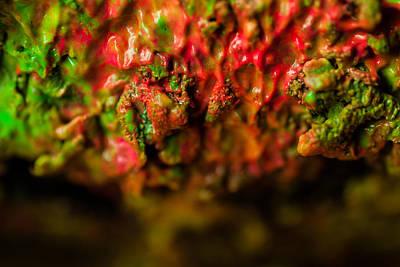 Photograph - Texture Matters by Gene Hilton
