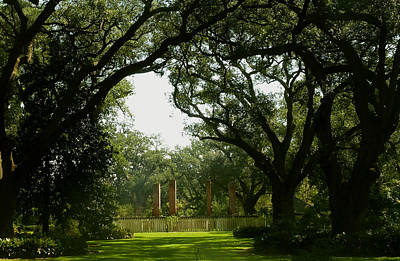 Tezcuco Plantation Grounds Art Print
