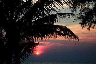 Animal Portraits - Thai Sunset on Koh Kut 1 by Jennifer Bright