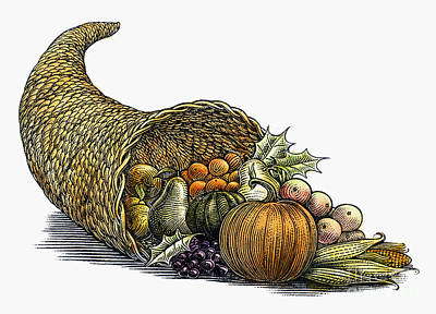 Photograph - Thanksgiving: Cornucopia by Granger