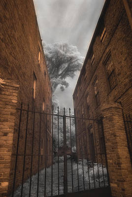 Photograph - The Alleyway by Joann Vitali