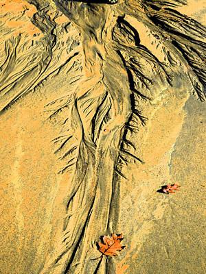 The Art Of Beach Sand Art Print by Marcia Lee Jones
