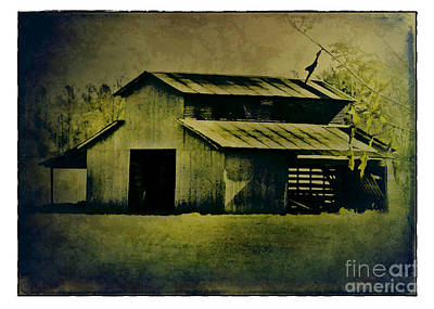 Photograph - The Back Barn by Judi Bagwell