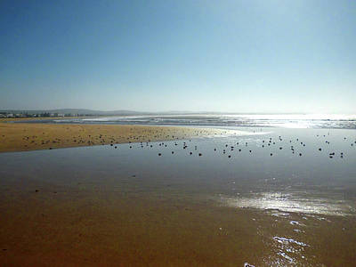 Moroccan Photograph - The Beach Of Essaouira 01 by Miki De Goodaboom