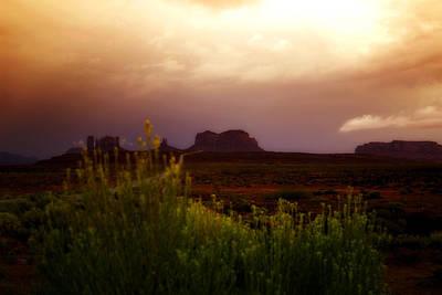 Photograph - The Beauty Of A Desert Sunset by Ellen Heaverlo