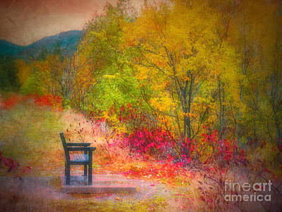 Photograph - The Bench Amongst Colour by Tara Turner
